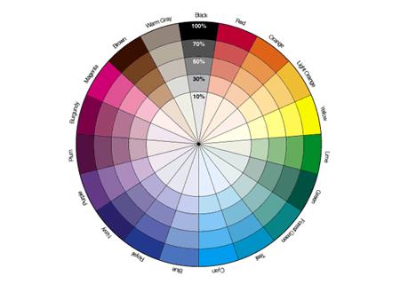 monochromatic-color